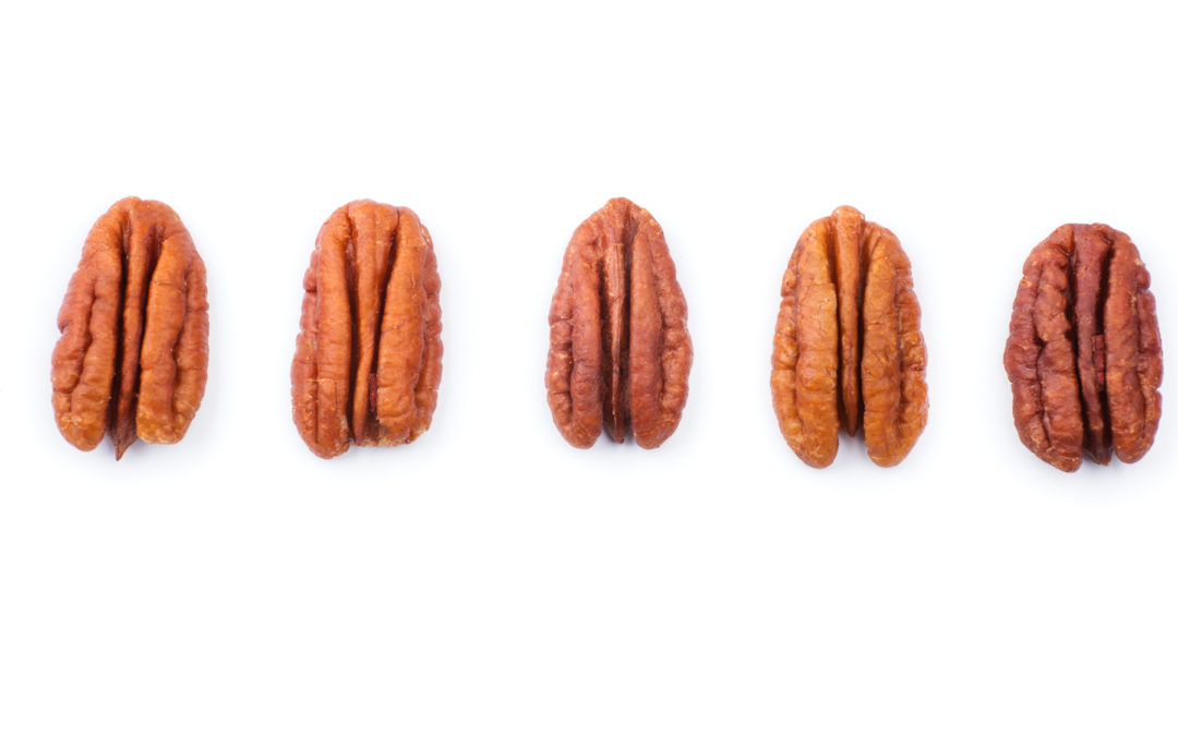 Pecan Fun Facts