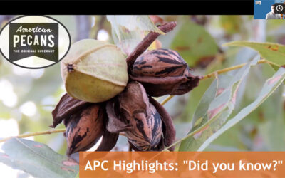 UPDATE OF THE AMERICAN PECAN COUNCIL 2021